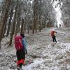 大雪の国見山遊山 霧氷の道