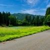 尼谷地の池(新潟県長岡)