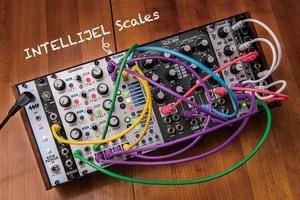 今月のモジュラー・シンセ:INTELLIJEL Scales 〜第11回 Patch The World For Peace