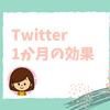 Twitterに登録して1か月!ブログアクセス数や活用方法