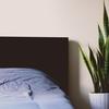 【シンサレート掛け布団】家族4人で寝るには最高の掛け布団