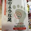 久々の再会(笑)「絹のような足」の日本語レベルがヤバすぎる💦
