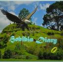 Hobibin diary