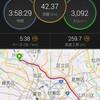 板橋Cityマラソン振り返り【2019/03/17】