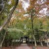 【地蔵院】静寂の竹の寺で紅葉を満喫!猪目窓が魅せる可愛いハートの世界