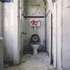 【キャンパーの悩み】キャンプ場のトイレが汚い!!最近はトイレを綺麗にしているキャンプ場が増えてありがたい。