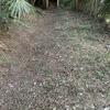 裏庭に祀ってある神棚の修復 -その1-