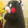 くまモン 丸広百貨店日高店に出没