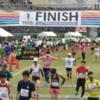 【2016~2017シーズン】この1年間に参加したマラソン大会まとめ