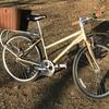 自転車:スタッガード & アヘッド:街乗り自転車:(3) 入手