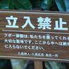 琉球神話のはじまりの島で、猫に粘着されつつウミヘビ汁をすする