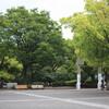 写真にっき:通勤練習(´・ω・`)