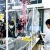 非常事態宣言発動中のバンコクに日本人はどのくらい残ってる?