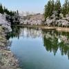 桜ヶ池(山形県米沢)