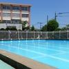 プール開き目前!ワンピースかセパレートか…。初めてのスクール水着選びに悩み中。