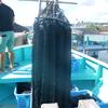 宝石珊瑚の民俗誌―高知県をフィールドとして―