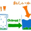 【苔を保管・育てる方法】ミスト式と水耕栽培で育てて比較を試みた