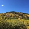 コロラド旅行④ロッキーマウンテン国立公園 Trail Ridge Roadドライブ、Brasserie TenTen(フレンチ)@ボルダー