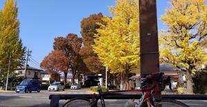 【行ったつもりシリーズ】「八王子いちょう祭り」モバイルスタンプラリーに自転車で挑戦!(前編)