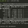 SwagArchで最適なミラーサーバーリストを作成するには