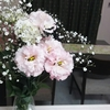 淡いピンク色の花のおかげ🎵
