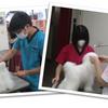 ★Campus Report★ 動物コース実習風景