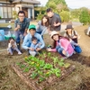 箱庭キッチンガーデンを南九州市川辺で作りました!