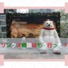 梅田の新スポット・リンクスのおすすめポイント5選