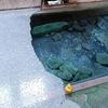 寒の地獄旅館*大分県玖珠郡九重町寒の地獄温泉