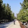 草加松原・「我が街・草加」の思い出・1…