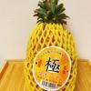 【日本でも買える】台湾パインが芯まで甘くて美味いんじゃ!《今が旬!》