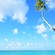 ビジネスクラスで新婚旅行なら、お金ではなくマイルを貯めるのが正解。ハワイもヨーロッパも夢のリッチ旅!