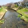 黒目川を歩く その1 最初は荒川から遡り、落合川合流点の神宝大橋まで