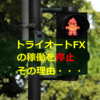 トライオートFXの稼働を停止、その理由。(2019.07.25)
