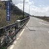 4月22日(水)bianchi project 3 1997 model