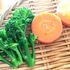 野菜づくりは食育