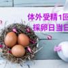 【不妊治療】はじめての体外受精・採卵日当日の流れ②(採卵結果)