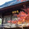 平林寺へ 紅葉散歩