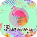 Flamingo's official site