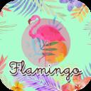 Flamingo's official site