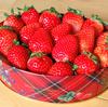 イチゴは赤く、春の大地とつながっている。