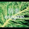 酵素の凄さ <乳がんブログ Vol.207>