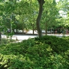 【流山公園探索】南流山7号公園(プリン公園)