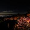 1週間の限定期間 大山寺・大山阿夫利神社の紅葉ライトアップに訪れてきました。