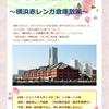 ひき桜2周年企画「横浜赤レンガ倉庫散策」のご案内