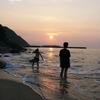 2004年 屋久島で会えたウミガメの思い出