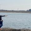 ★ 芝川第一調整池(埼玉県)で暖かい冬の日のナマズを狙って散歩♫