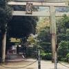 京都 八幡「走井餅」お店で頂きました。