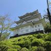 新緑の季節 狩川土手の桜、小田原城址公園散策