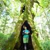 森の甘い香り。鳥の歌声。何度でも新しい発見がある原生林
